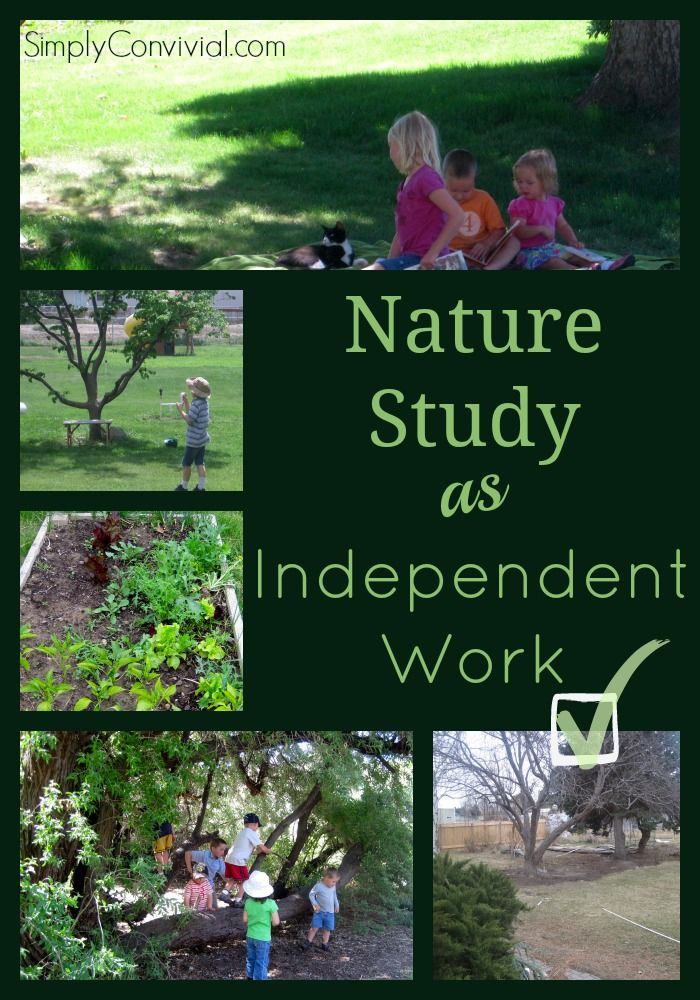 A different take on #naturestudy.