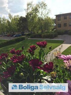 Bavnehøj Park 21, 1. tv., 3500 Værløse - Dejlig 4 Værelses lejlighed #ejerlejlighed #ejerbolig #værløse #selvsalg #boligsalg #boligdk