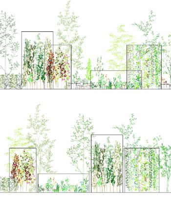 Junya Ishigami(Architect)/Hideaki Ohba(Botanist), Extreme Nature: Landscape of Ambiguous Spaces (installation image), 2008, variable size and dimention, courtesy Gallery Koyanagi.