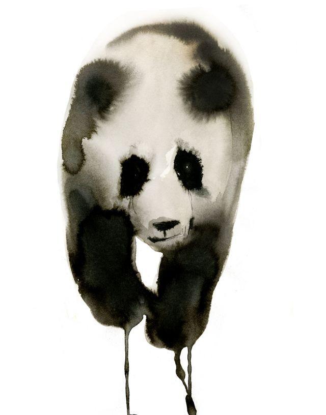 Panda   Stina Persson   makersmgmt.com
