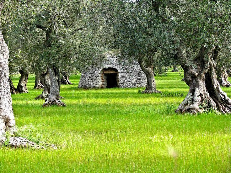 Pagliara - Caprarica di Lecce