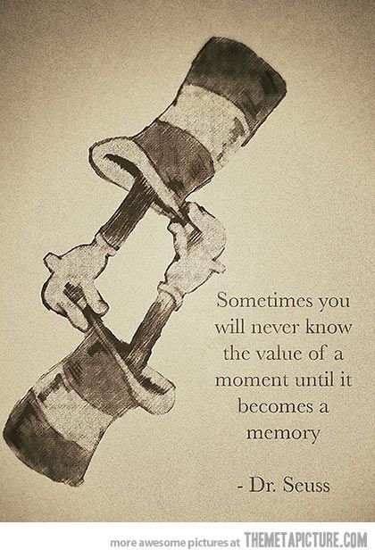 Sometimes you will never know the value of a moment until it becomes a memory. - Dr Seuess