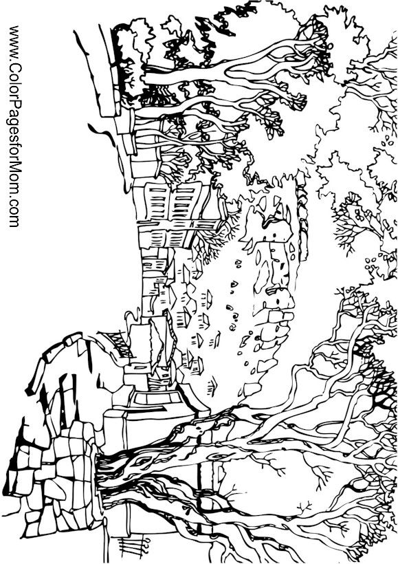 2645 best images about coloring adult on pinterest Landscape coloring books for adults