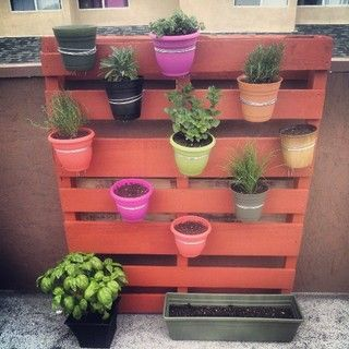 Vertical Pallet Garden DIY. in the backyard by the shed