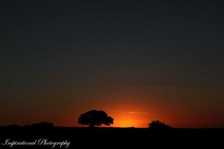 Sunset on the Amakhala Game Reserve. Photographed by: Ranger Kyle Ansell. #sunset #amakhala #safari