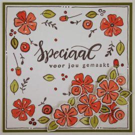 Clear stamp: (KJ1702) gewoon - speciaal