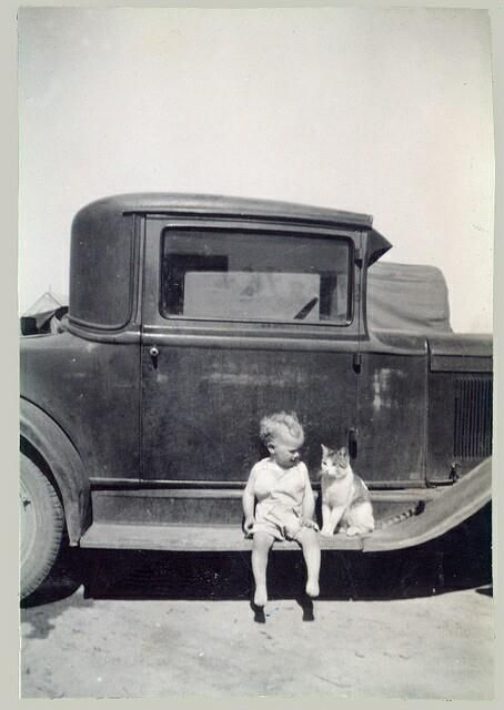 little boy and his cat, sitting on a running board