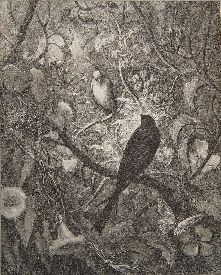 Charles Laplante i Paul Gustave Doré, Ptaki wśród pnączy wg Gustava Doré, II połowa XIX wieku #birds #ptaki #kolekcjaMNK #MNKcollection #kolekcja