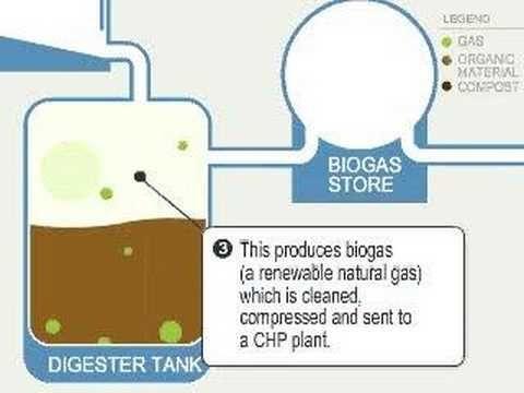 Biogas, the Forgotten Free Renewable Energy - ecogreen4us