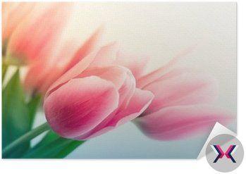 Plakát Pixerstick Jarní tulipány