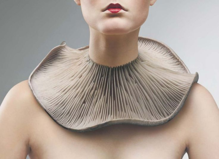 Mushroom necklace - @ Harvey Nichols #contemporary #jewelry