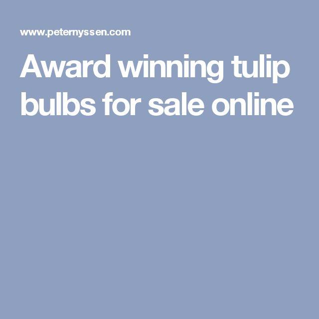 Award winning tulip bulbs for sale online