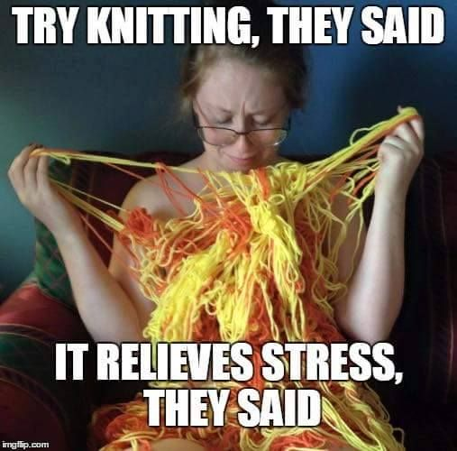 Cat Knitting Meme : Best images about yarny goodness on pinterest free