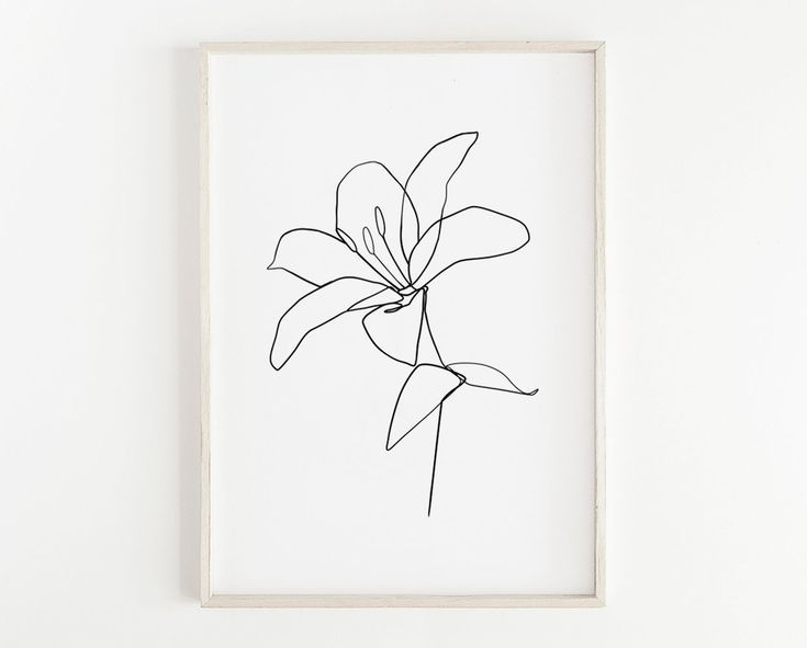 Minimalist Flower Drawing Botanical Drawing Abstract Flower