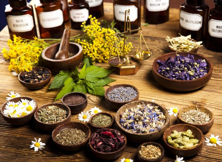 Herbs for weight loss 5 HERBS FOR POWERFUL DIGESTIVE CLEANSING www.hminutrition.com Become a Plant Based Certified Health Coach Online!