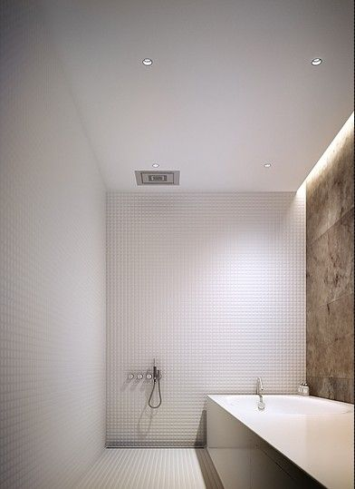 interesting way to combine a shower and tub in a small space...but the practicality of getting everything wet when using the shower?  I do like the recessed lighting in the ceiling - nice touch