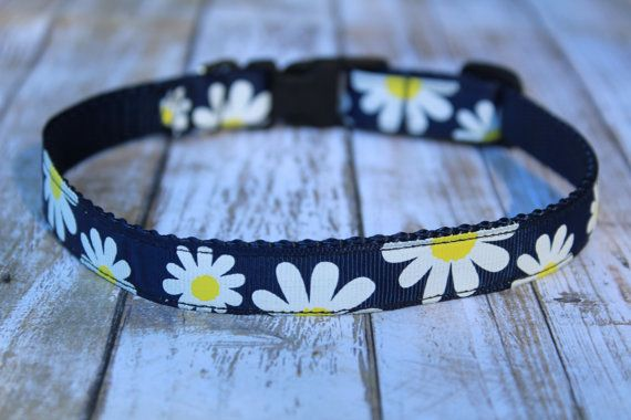 Hey, I found this really awesome Etsy listing at https://www.etsy.com/listing/487688007/daisy-dog-collar-floral-dog-collar-navy