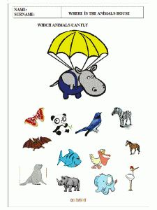 find-the-animal-which-can-fly-worksheets-for-preschool-kids-1