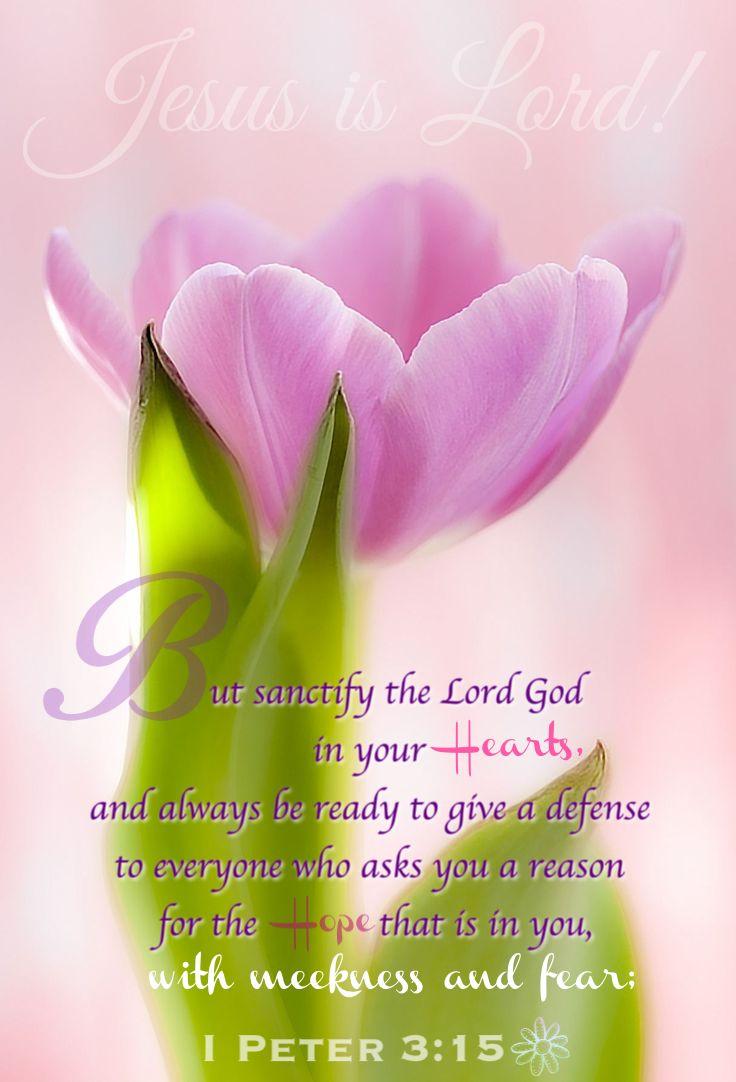 Jesus is Lord! 1 Peter 3:15