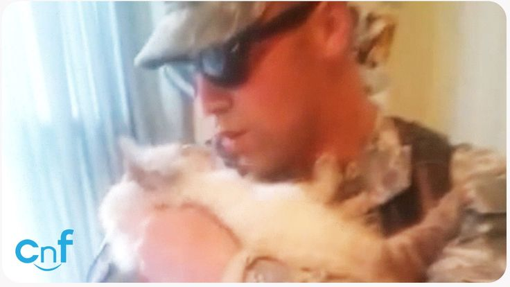 This soldier is welcomed home by his excited cat who impatiently waits by the door. As soon as the soldier walks through the door, the cat leaps into his arm...
