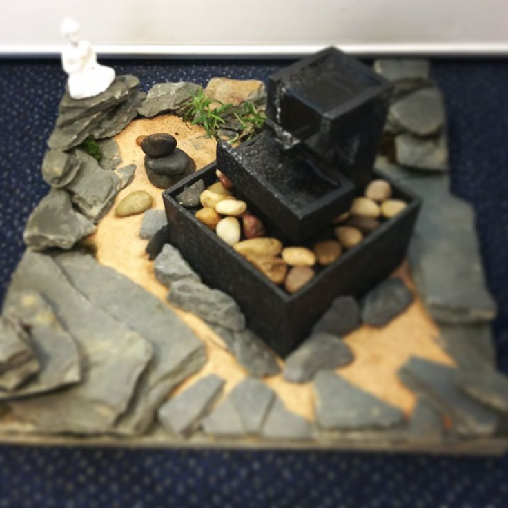 The tcc office miniature japanese garden with 39 living for Zen fish tank