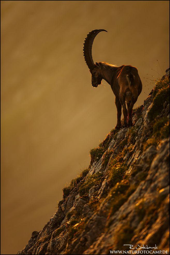 on high mountains ...   photo: radomir jakubowski