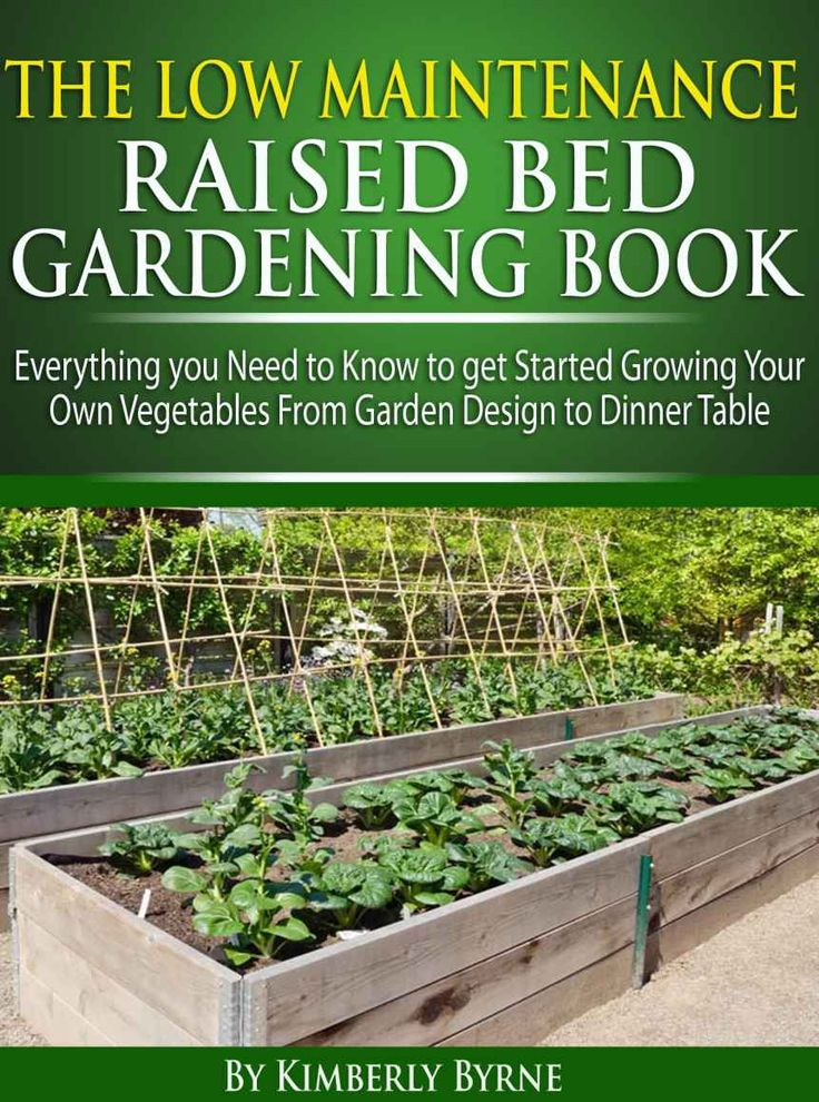 Amazon.com: The Low-Maintenance Raised Bed Gardening Book - Everything you need to know to get Started Growing Your Own Vegetables from Garden Design to Dinner Table eBook: Kimberly Byrne: Kindle Store