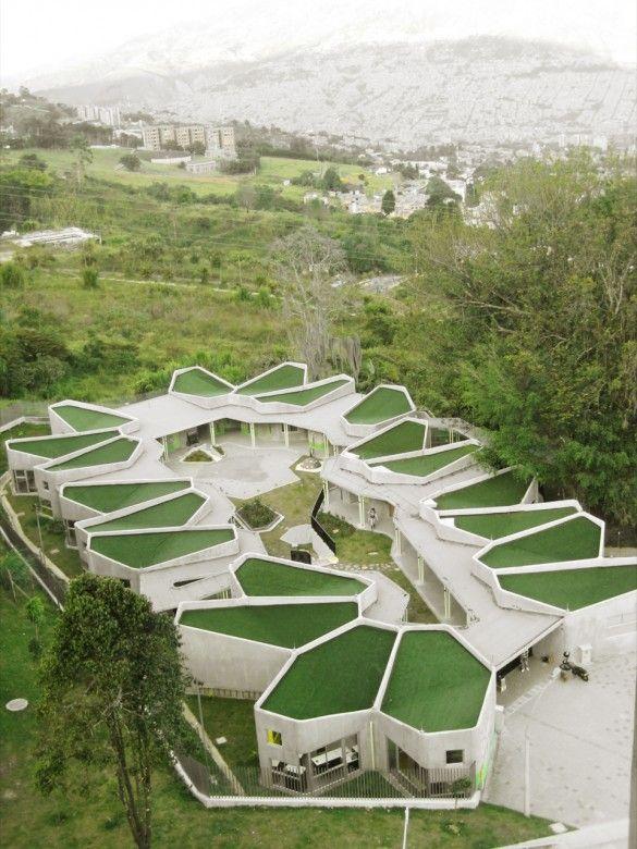 Jardin Infantil Pajarito La Aurora medellin colombia. Green roof