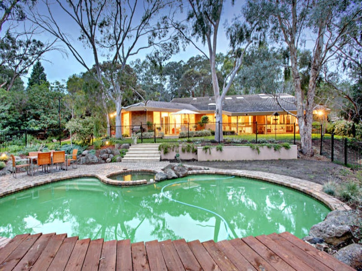 Australian native themed garden with a pool garden for Pool design ideas australia