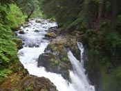 Sol Duc Hot Springs.  Stumbled upon this place on a road trip in the great NW