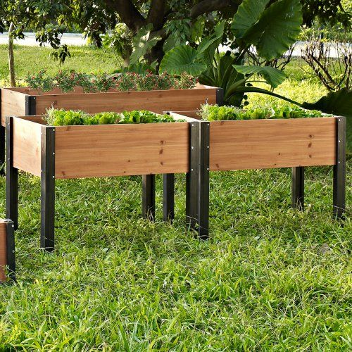 Coral Coast Bloomfield Wood Elevated Garden Bed - 40L x 20D x 29H in. - Raised Bed & Container Gardening at Hayneedle