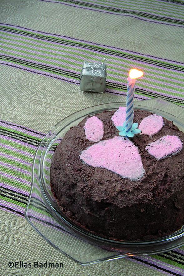 Gâteau d'Anniversaire Pour Chat vérifié par un véto / Birthday Cake For Your Cat verified by a veterinary doctor