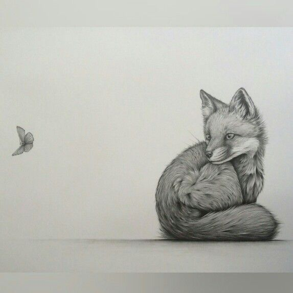 """""""Intrigue"""" by Kerry Jane. Fox cub, pencil drawing"""