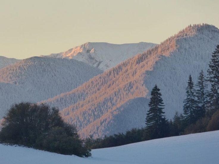 The Carpathian Mountains of Slovakia in the winter <3