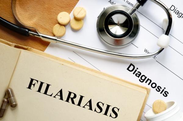 Filariasis linfática: contagio, síntomas y tratamiento - ONsalus