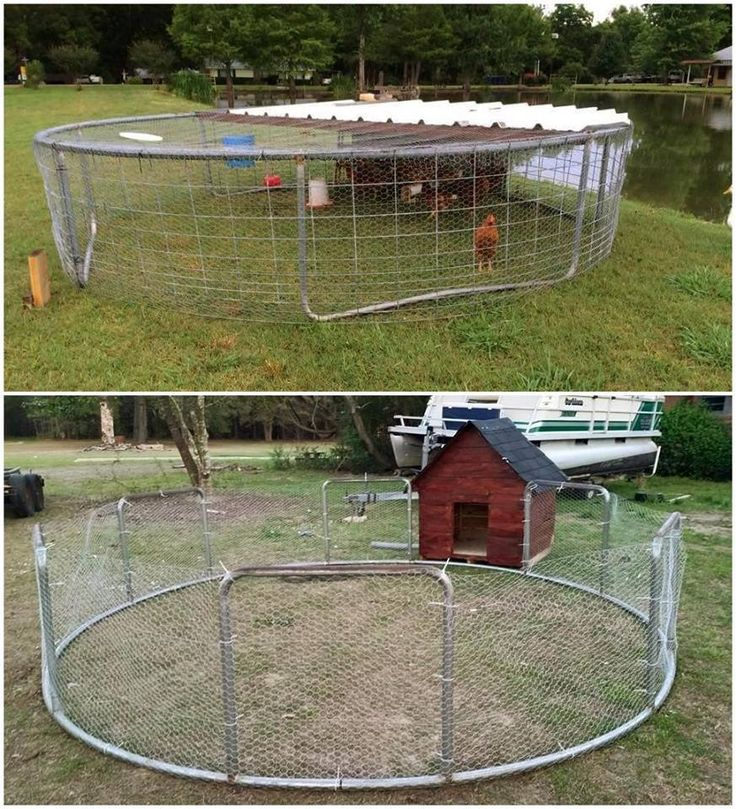 "2017 Turn a TRAMPOLINE into a CHICKEN COOP Predator ""proof"" Wire can be laid over top and underground to stop the chickens from flying , digging out, covered with dirt, the grass still grows through, tent pegs/stakes can be used to hold the pen/cage down. For foxes surround with gravel and add paving slabs. The top pic is for chickens and the bottom pic being used as a dog pen or outside play pen for kids. LOL #backyardtrampolineyards"