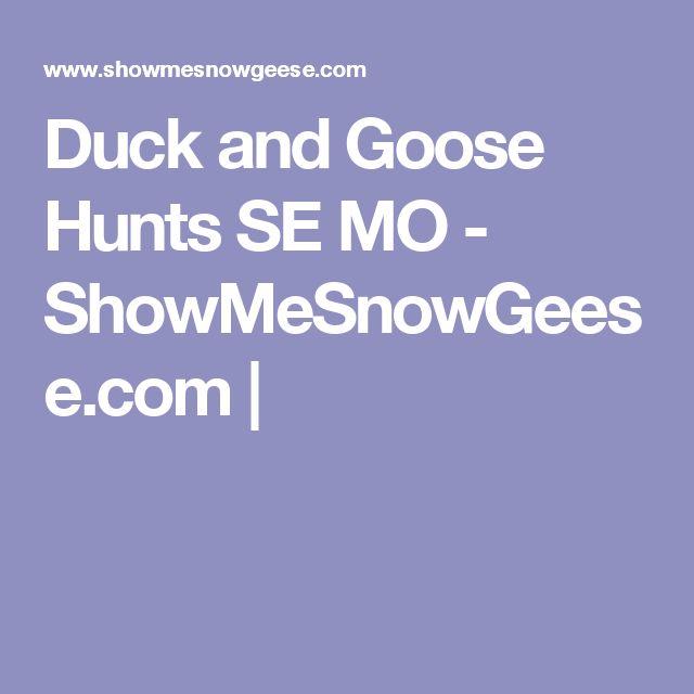 Duck and Goose Hunts SE MO - ShowMeSnowGeese.com |