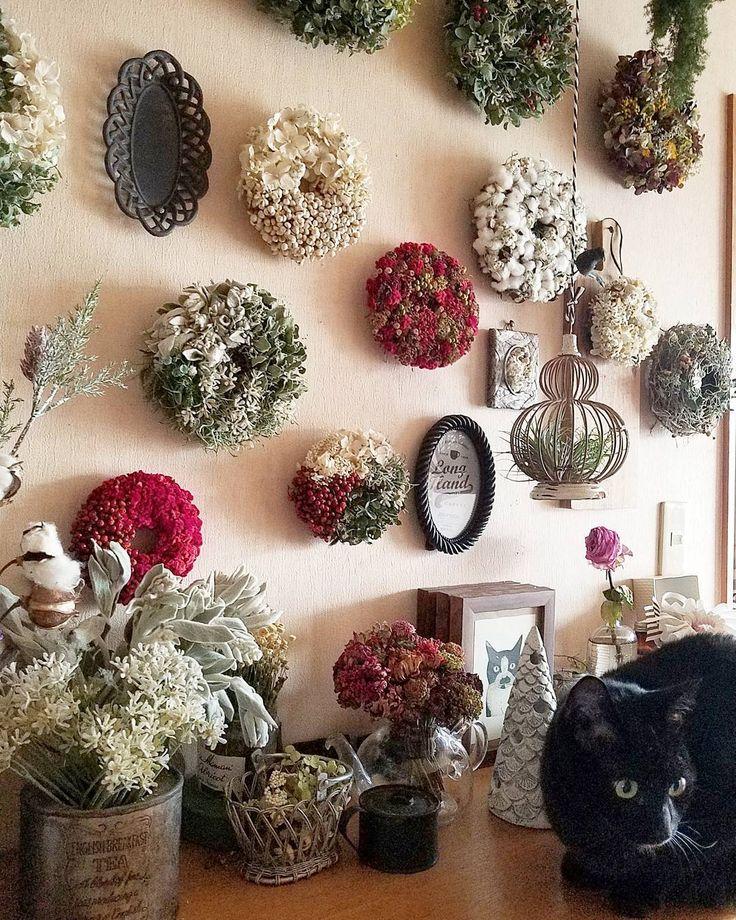 夕方、南の窓から差す光 午後4時ごろのリースの森 #kuruminoisuwreath #wreath #リース #flowers#flowerstagram #ドライフラワー #ドライフラワーのある暮らし #driedflowers #胡桃の椅子花部門 #魔女の館 #blackcat #黒猫