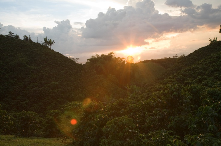 A beatiful sunset in Pereira, a coffee city where dry and rainy seasons alternate through the months producing a regular crop of fresh coffee all year round.  http://colombiancoffeehub.com/origin#post815
