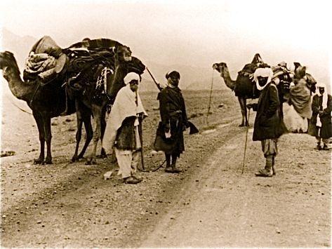 001 Pin by Vivek Sekar on BM Animals, Camel, Caravan