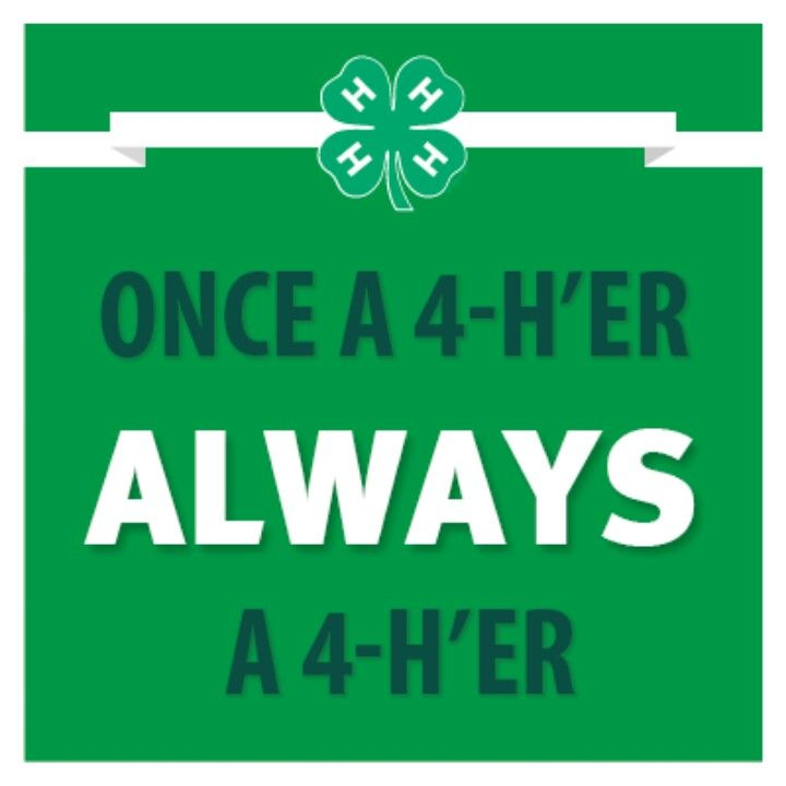 Once a 4-H'er  always a 4-H'er. I loved 4-H and always will. One of the best organizations your kids could be in.