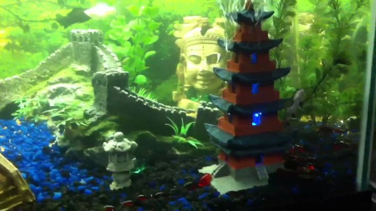 Best 25 fish tank themes ideas on pinterest aquarium for Asian fish tank decorations