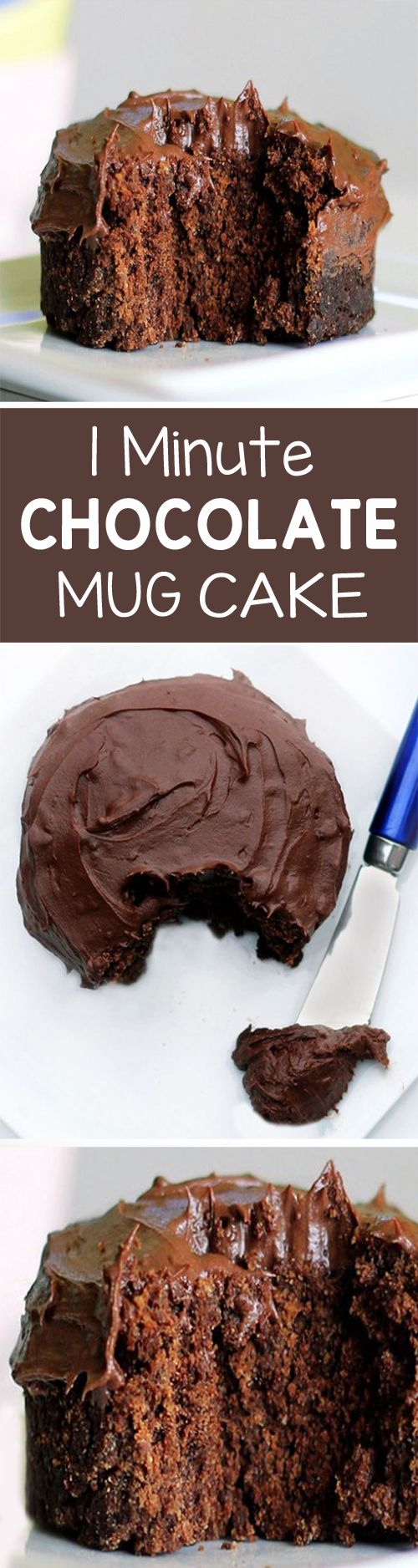 """1 Minute"" Chocolate Mug Cake - For when you're craving something gooey & chocolatey, but still want to be healthy... (under 200 calories)... @choccoveredkt https://chocolatecoveredkatie.com/2011/11/06/one-minute-chocolate-cake/"