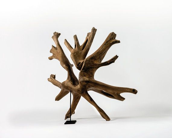 Dimensions: 70 x 165 x 170 cm  Status: IAOHIN Gallery at Macau  Human roots collection  This collection is made up of 200-year-old teak wood roots