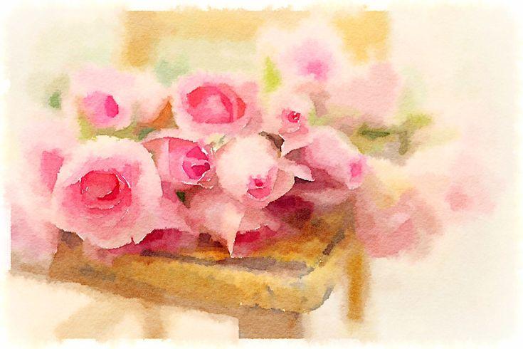 https://flic.kr/p/ncFvDk | roses