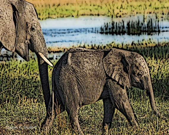 Mother And Baby Elephant Drawing Serengeti by GrayWolfGallery