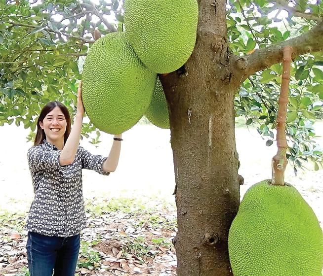 Annie Ryu, founder of Boulder-based The Jackfruit Company, pictured here by a jackfruit tree in rural India.