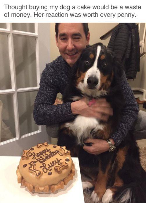 I look at cake the same way. (via tastyhouse)