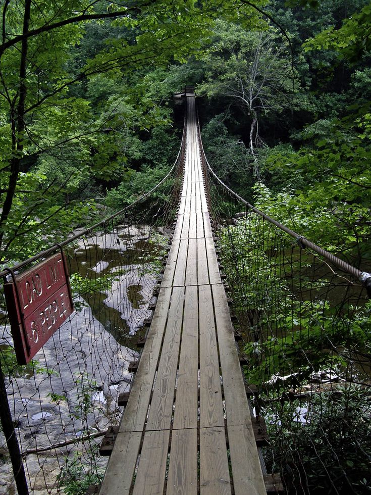 Fall Creek Falls Tennessee Suspension Bridge Over Cane