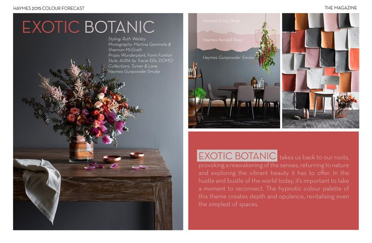 Colour trends and forecast for 2015 - Haymes Paint digital magazine.